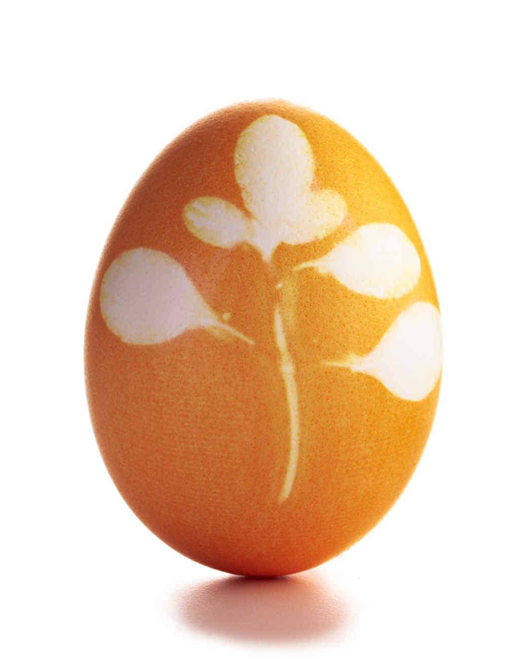 egg-dyeing-app-d107182-masking-2orange-botanical0414.jpg