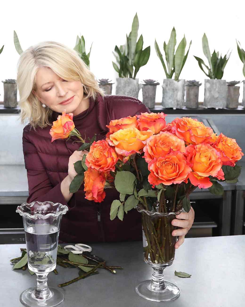 martha stewart bloomsybox roses