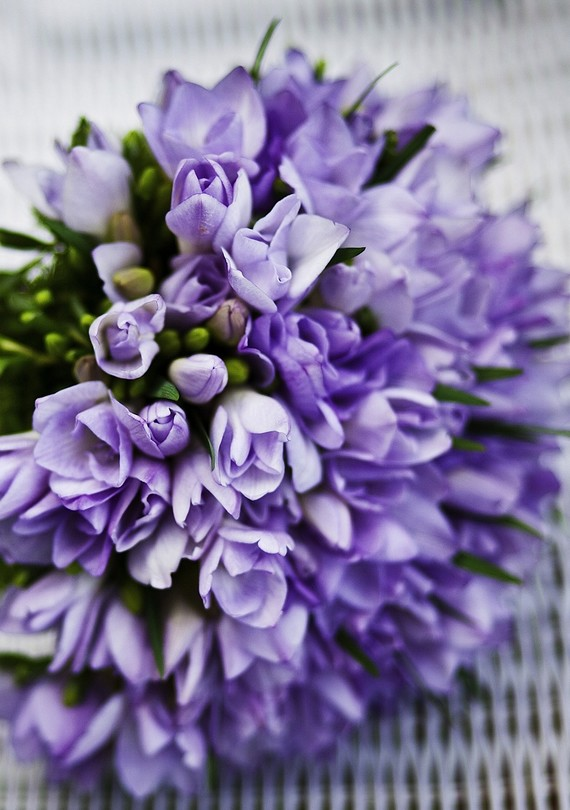 Four Ways to Prolong the Life of Your Cut Flowers