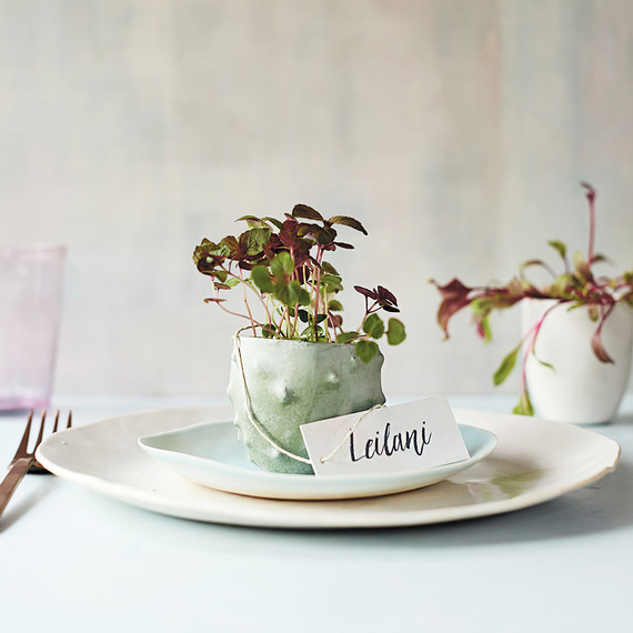 place setting with miniature spring planter