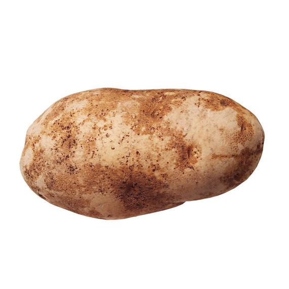 Russet Potato