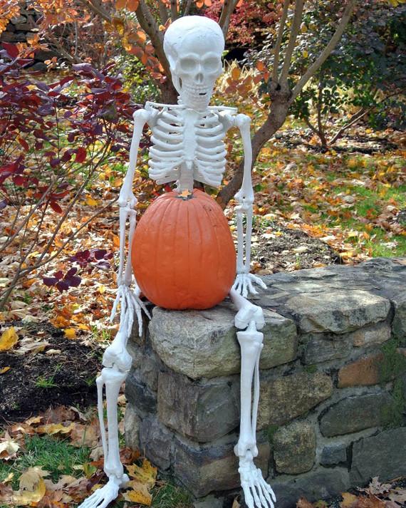 halloween-prep.jpg
