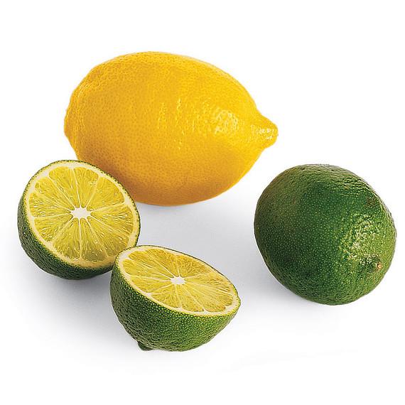 msl_jun06_citrus.jpg