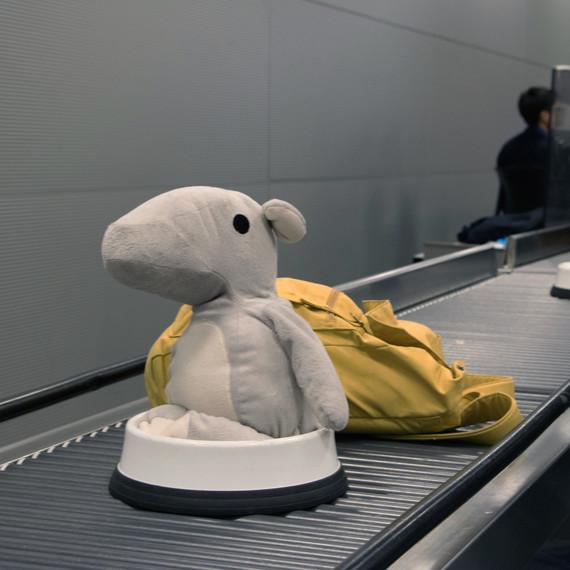 pari at the airport