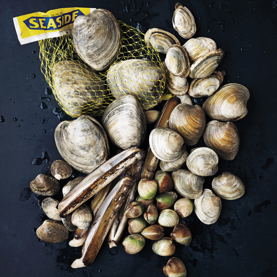 clams-026-md110163.jpg