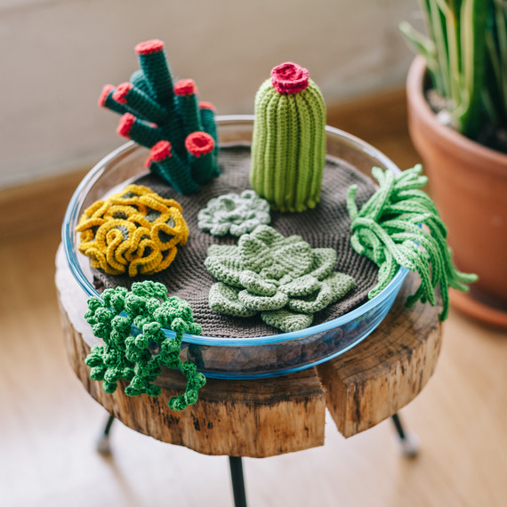 How To Crochet A Terrarium Including 7 Different Succulents