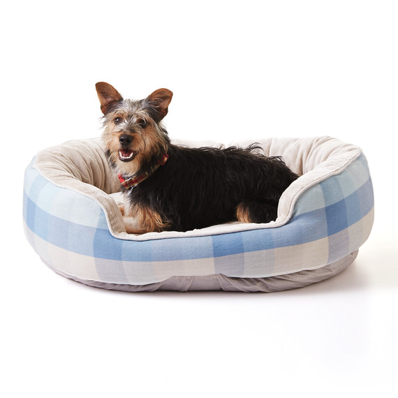 How To Stop Your Dog From Tearing Up Its Bed Martha Stewart