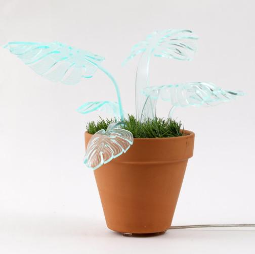 plant lamp off