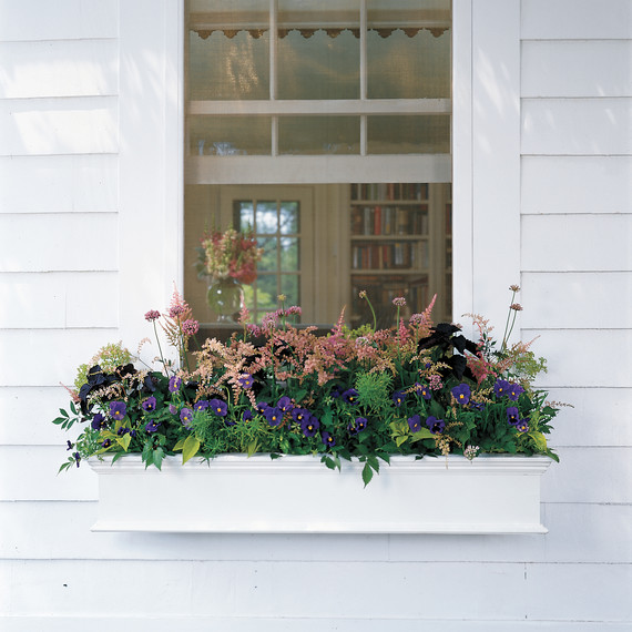 window-box-ml805s05.jpg