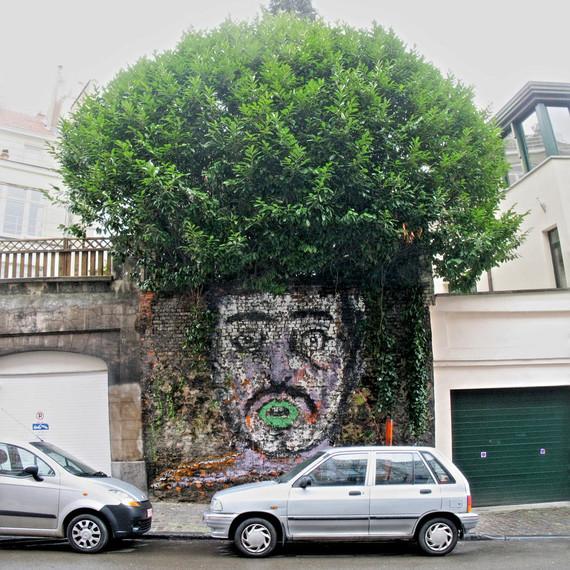 street art plant hair