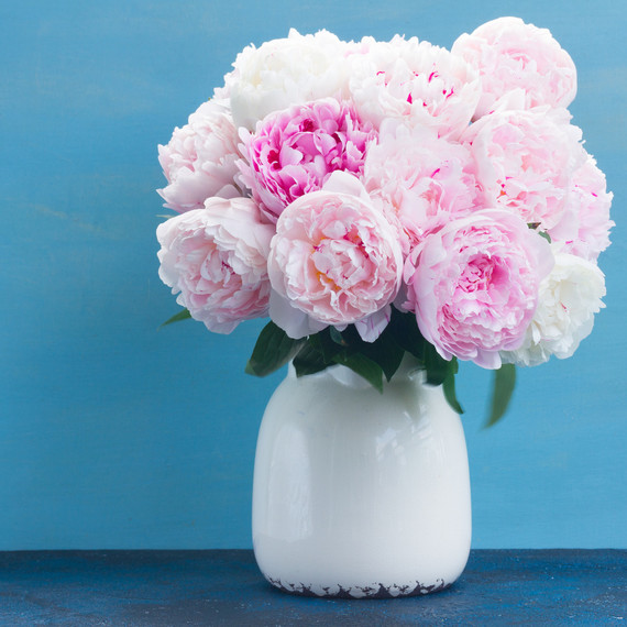 A blush pink bouquet in a vase on a blue background.