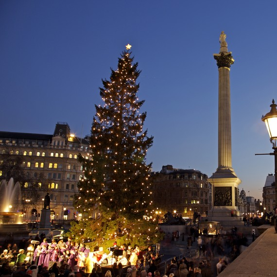 London's Trafalgar Square Christmas Tree Comes From Norway in 2018