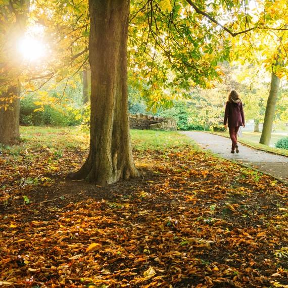 Getty-walking-outdoors-park