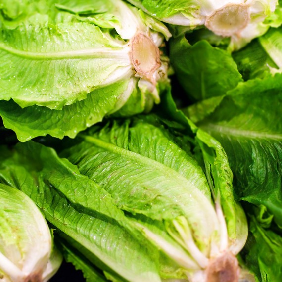 Is Romaine Lettuce Safe to Eat Now?