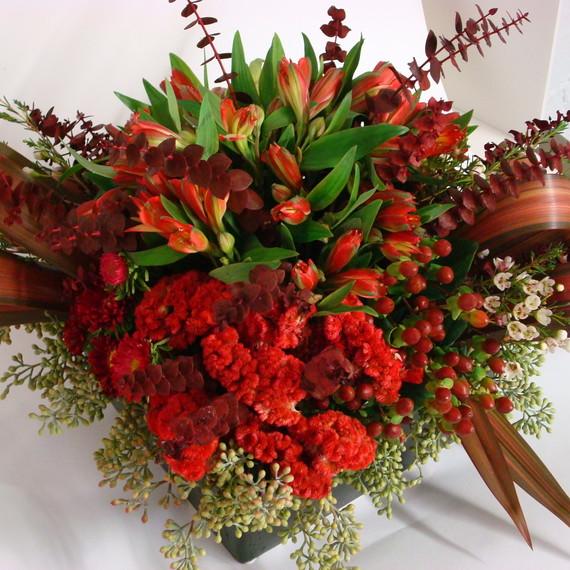 red-christmas-flowers.jpg (skyword:339364)