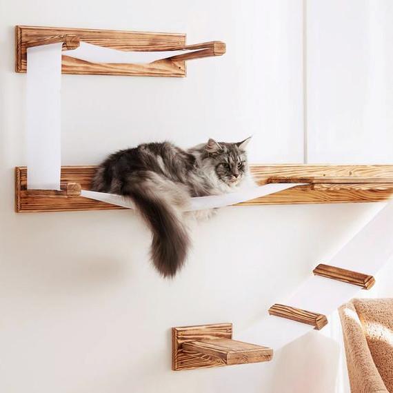 cat wall shelving