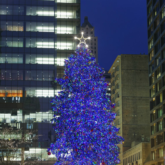 Chicago's Christmas Tree in Daley Plaza