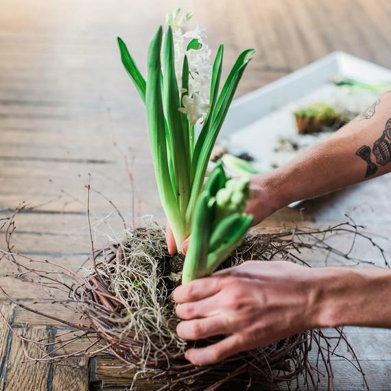 diy-hyacinth-nest-0313.jpg