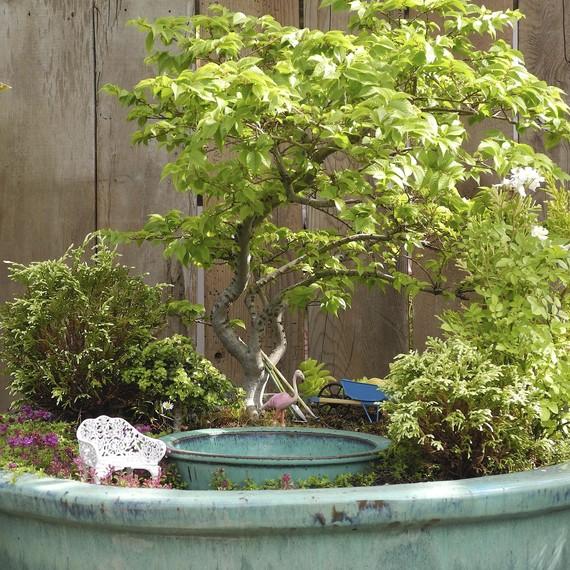 fairy-gardening-6-0215