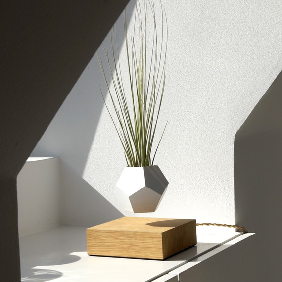 floating planter window