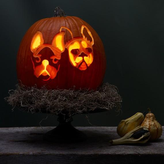 etched dog pumpkin