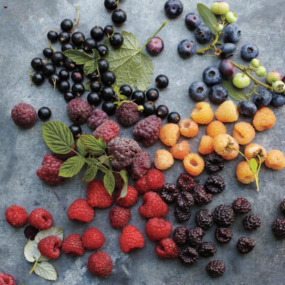 msl-berries-2-mld107637.jpg