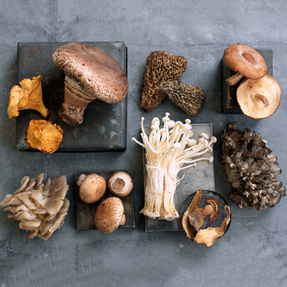 Mushroom Glossary: Get to Know These Delicious Varieties