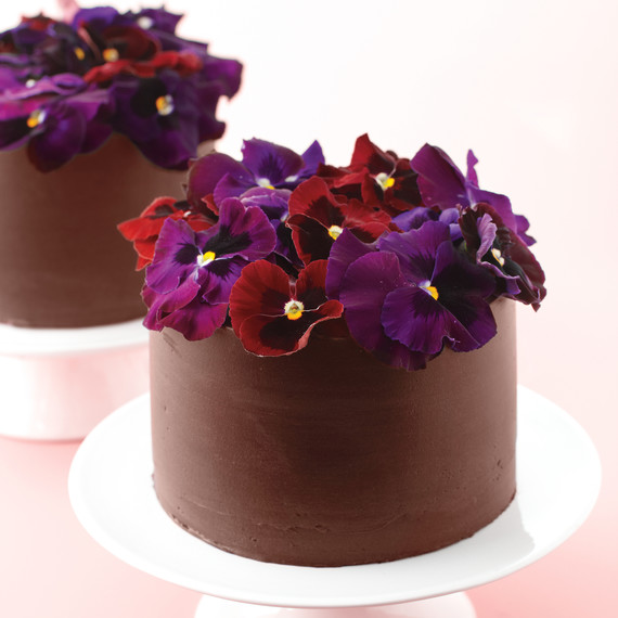 Chocolate Cakes With Pansies