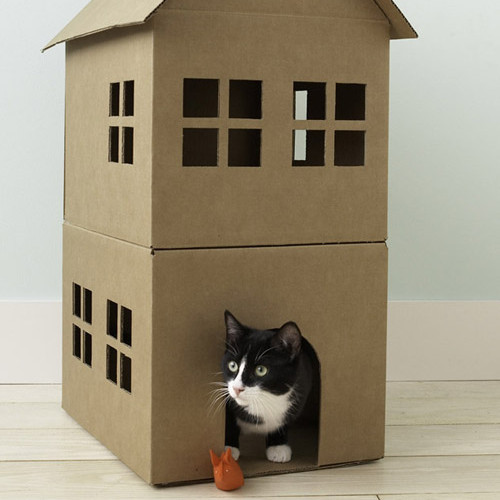 pc_wgd104781_cathouse3a.jpg