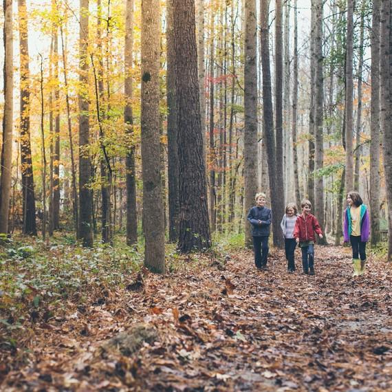 serenbe trail kids