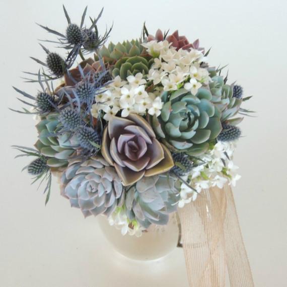 v-day-flowers-succulent.jpg (skyword:392640)