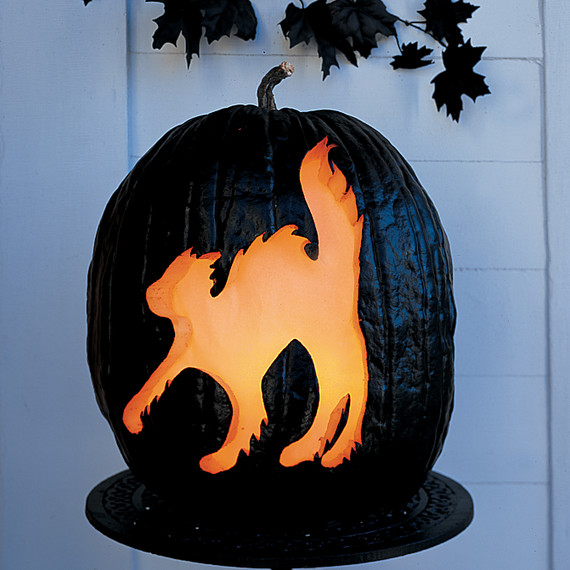 How to carve a haunting glowing cat pumpkin martha stewart for Cat carved into pumpkin