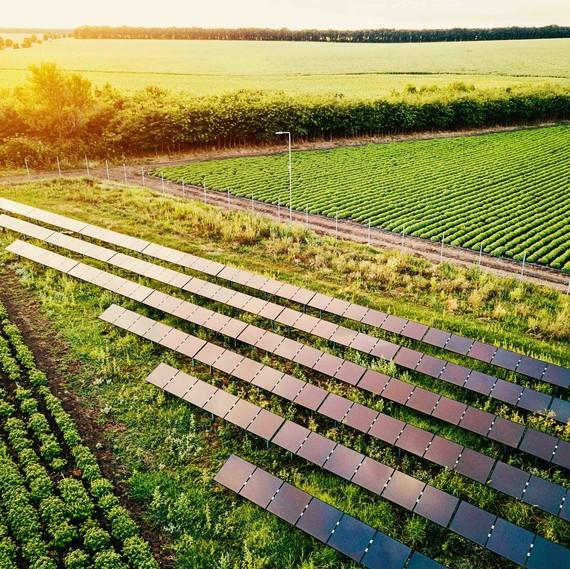 solar energy fields