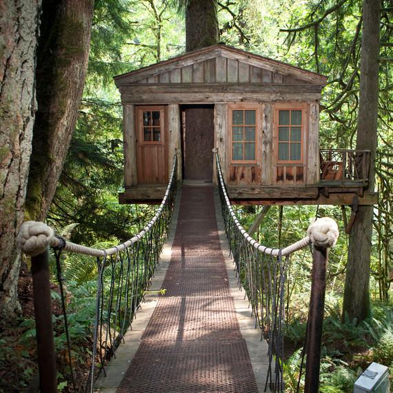 treehouse point bridge