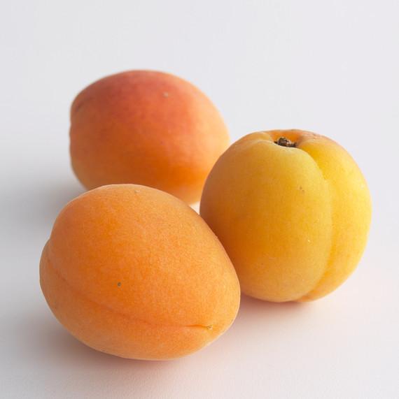 apricots-d1000131-02-0603.jpg