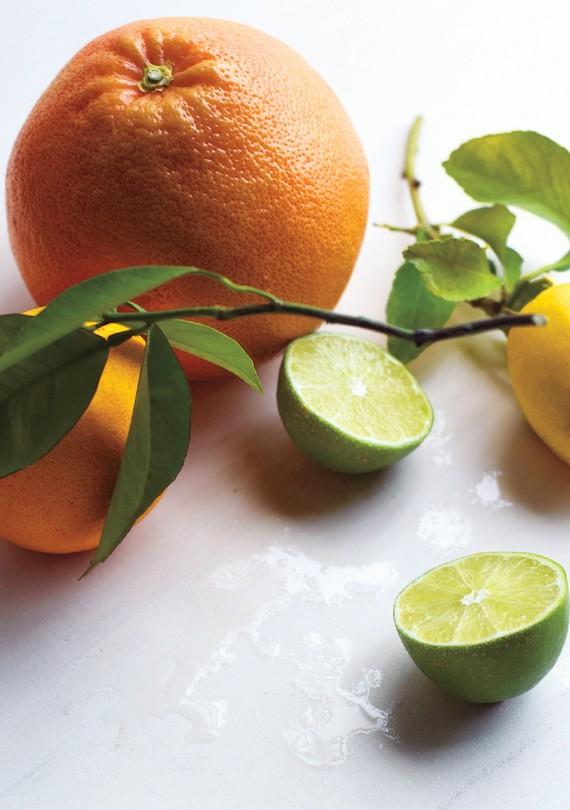 citrus-for-martha-stewart.jpg (skyword:397322)