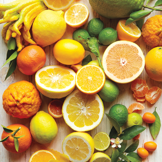 citrus-title-page-s112598.jpg