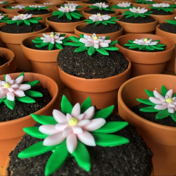 Flour Power! How to Make Cupcake Flowerpots