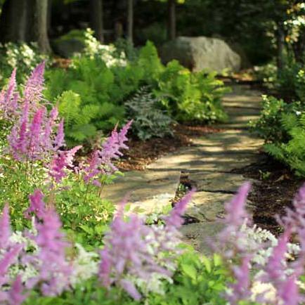 landscaping trends garden path