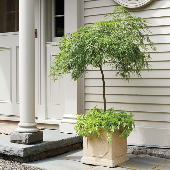 planter-maple-0022-d111341.jpg