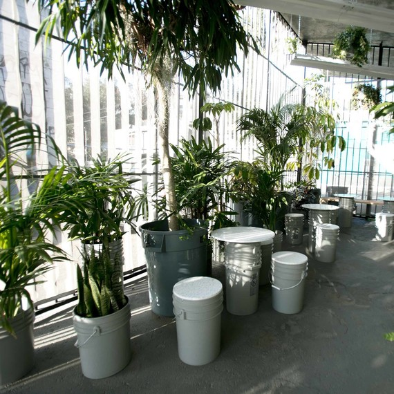 the goods mart jungle