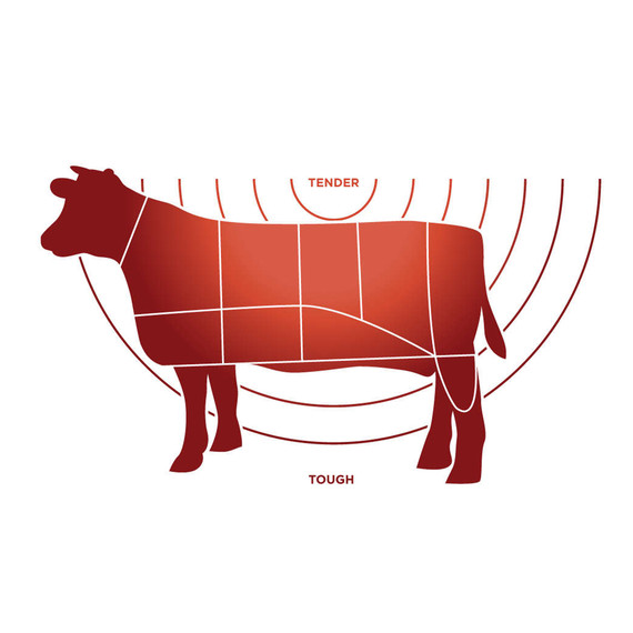 Blank Diagram Of Beef Cattle House Wiring Diagram Symbols