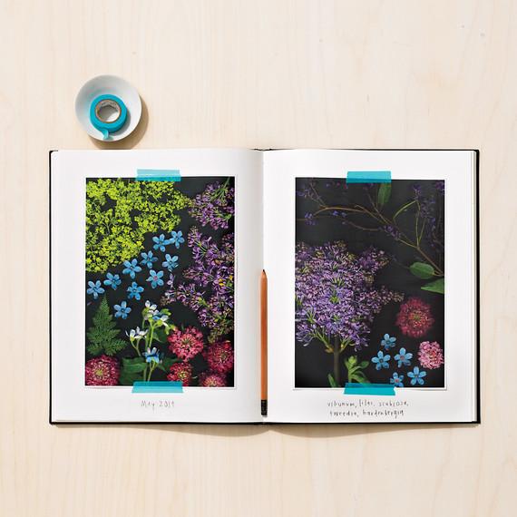 flower-journal-216-md110971.jpg