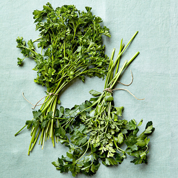 parsley varieties