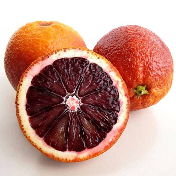 blood-oranges_1110_original2.jpg