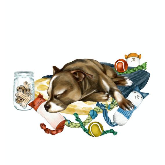 do-unto-animals-illustration.jpg