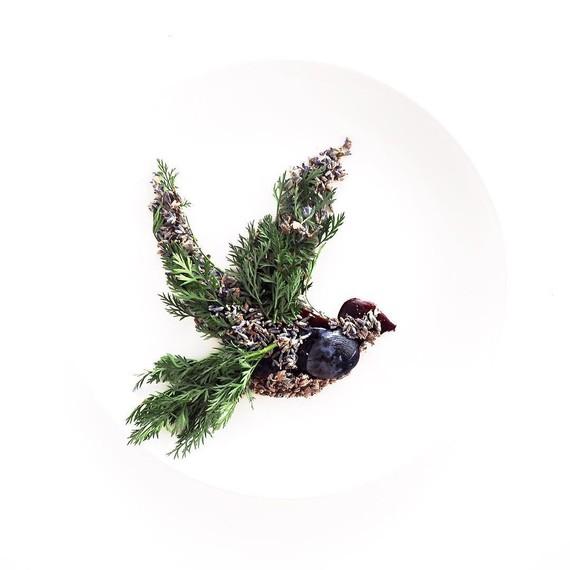 hummingbird-food-art-cc-0617