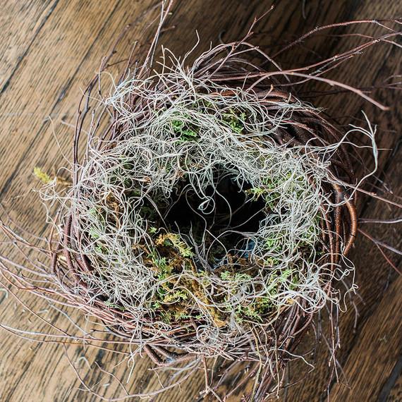 nest-easter-spanishmoss-0313.jpg