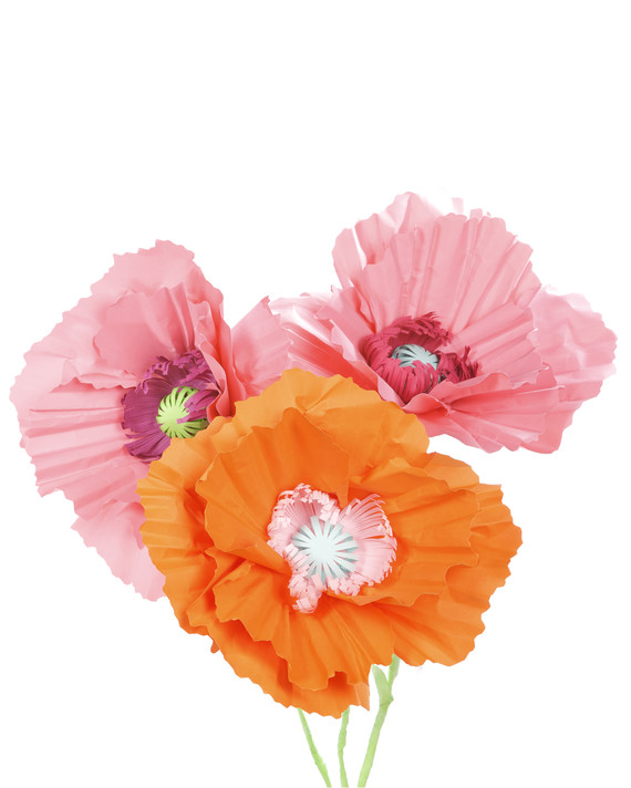 4160_052009_paperpoppies_prev.jpg