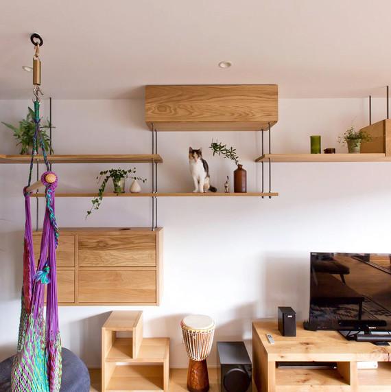 cat playground apartment